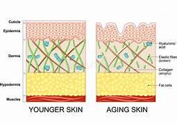 Dermabrasion - Ageing Skin & Uneven Skin Tone