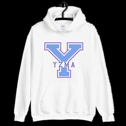 Yzma Varsity Hoodie