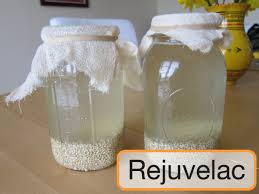 Bebidas fermentadas
