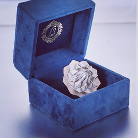 Ring with 7777 diamonds - box view