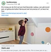 wall.k.dot pubicatie bij vanillemeisjes