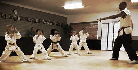 Gin Ryu Martial Arts Academy | Richomnd, KY Karate Training