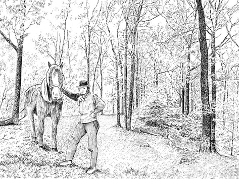 Countrystride #40: BILL LLOYD - Into the woods