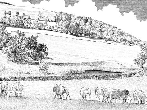 Countrystride #38: JAMES REBANKS - English Pastoral