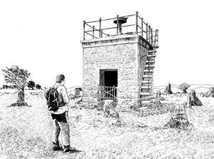Countrystride #62: GRANGE-OVER-SANDS & Hampsfell