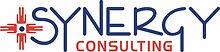Synergy Consutling Logo.jpg