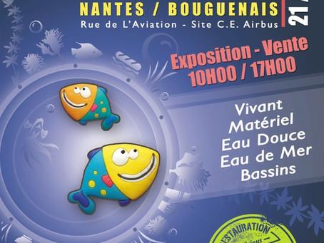 Bourse de Nantes