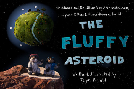 The Fluffy Asteroid Cover Page