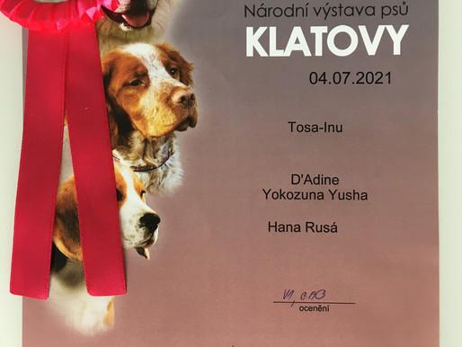 🎉Přinášíme novinky z Národní výstavy v Klatovech! :)🤩🤩🤩