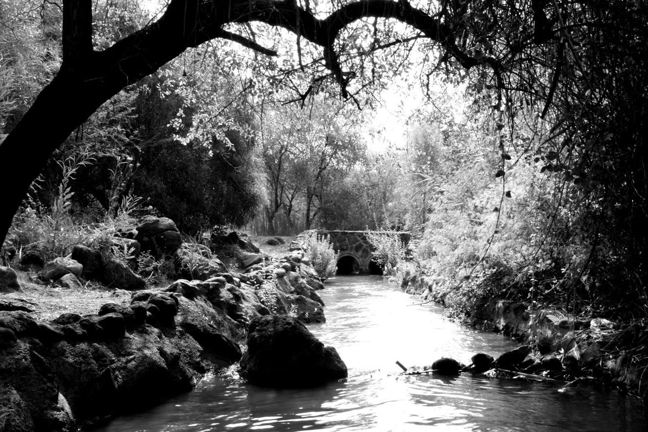 A day By the River #1