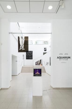Aquarium - Installation view   Installation photos by Doron oved