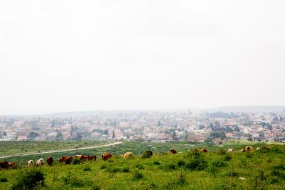 Medow above Kara village