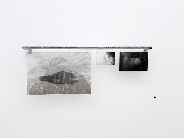 """prints from """"findings from the Red sea"""" series  Inject print on slide 35X50 cm 