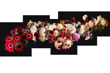 Persephone's Carpet