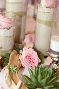 Sand, Garden Roses & Succulents