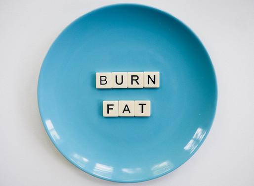 """Células """"quema-grasa"""", una prometedora herramienta para el tratamiento de la obesidad"""
