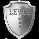 shieldlevel1.png