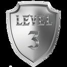 shieldlevel3.png