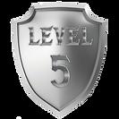 shieldlevel5.png