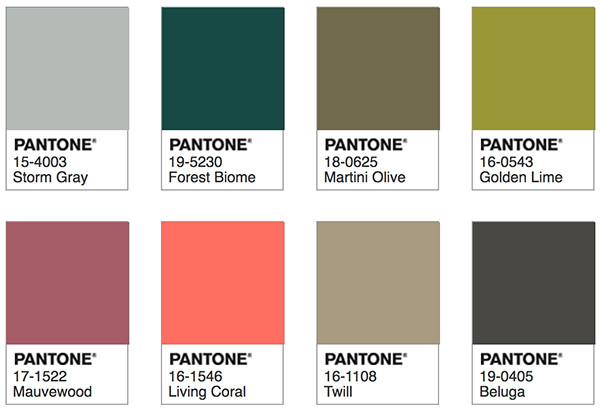 Pantone Living Coral - Focal Point Palette