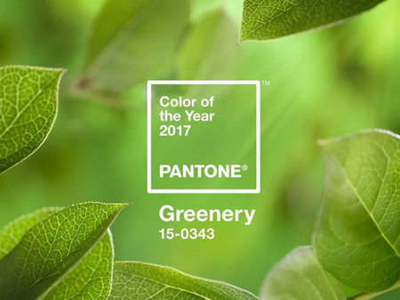 Pantone Colour of the Year 2017 Greenery in Use