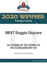 process-canine-winners-certificate.jpg