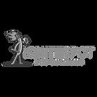 website logos gray_Ignite Spot.png