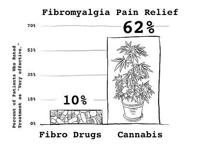 FibroPainReliefFinal.jpg
