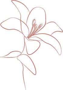 Icon_Lily_Dark.png