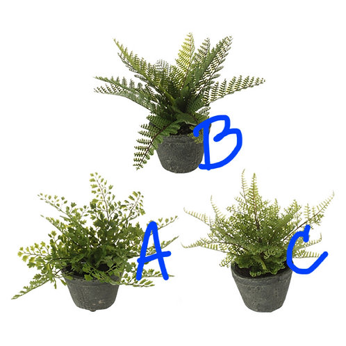 "11"" (A) Artificial Potted Fern"
