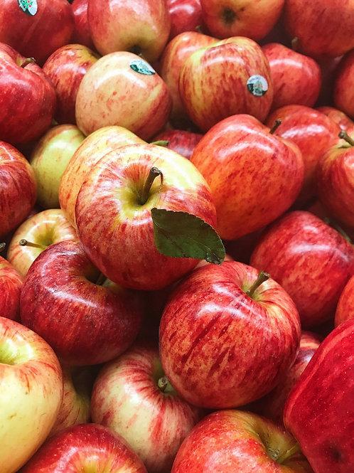 Local Apples per bag