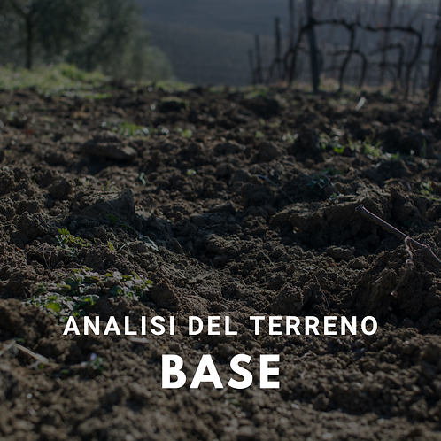 Analisi del terreno BASE