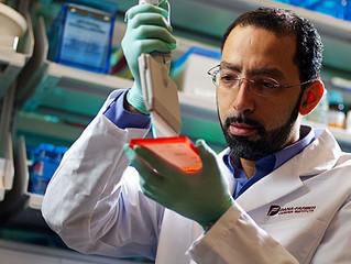Sequencimento genético revela novas mutações ligadas ao câncer de pele