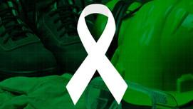 Abril Verde: qual o verdadeiro significado da campanha?