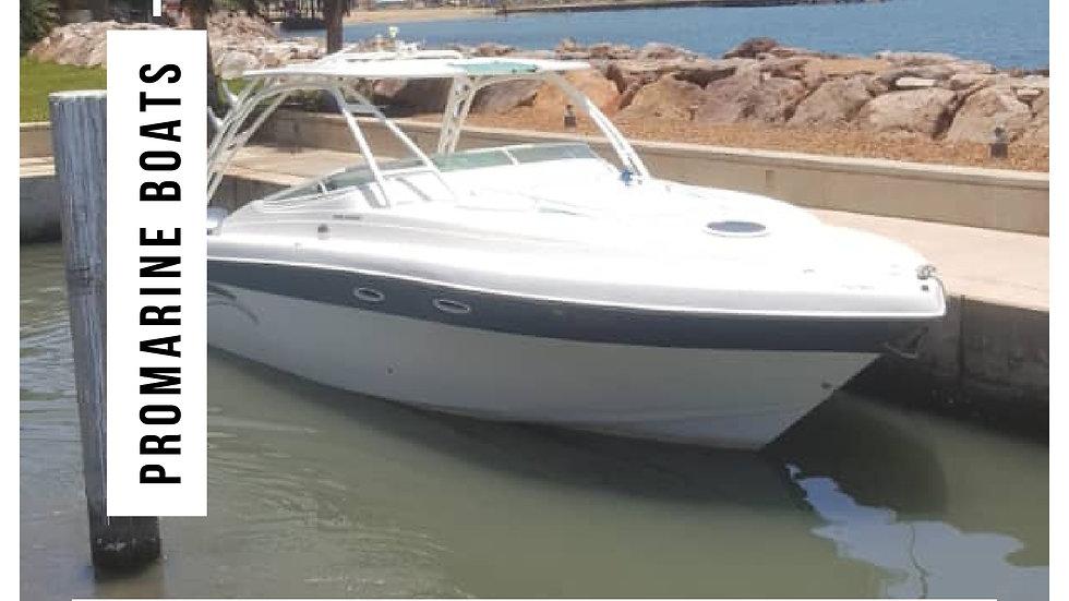 Bote Promarine año 2008