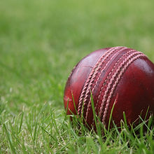 cricket_ball_in_the_grass.jpg