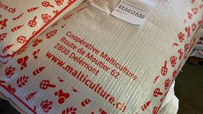 IG Juramalz besucht Malticulture in Delsberg