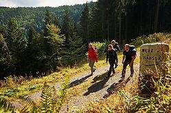 Albtal-Wandern Tourismusgemeinschaft Albtal, Waldbronn
