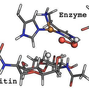 Molecular mechanism of the chitinolytic peroxygenase reaction