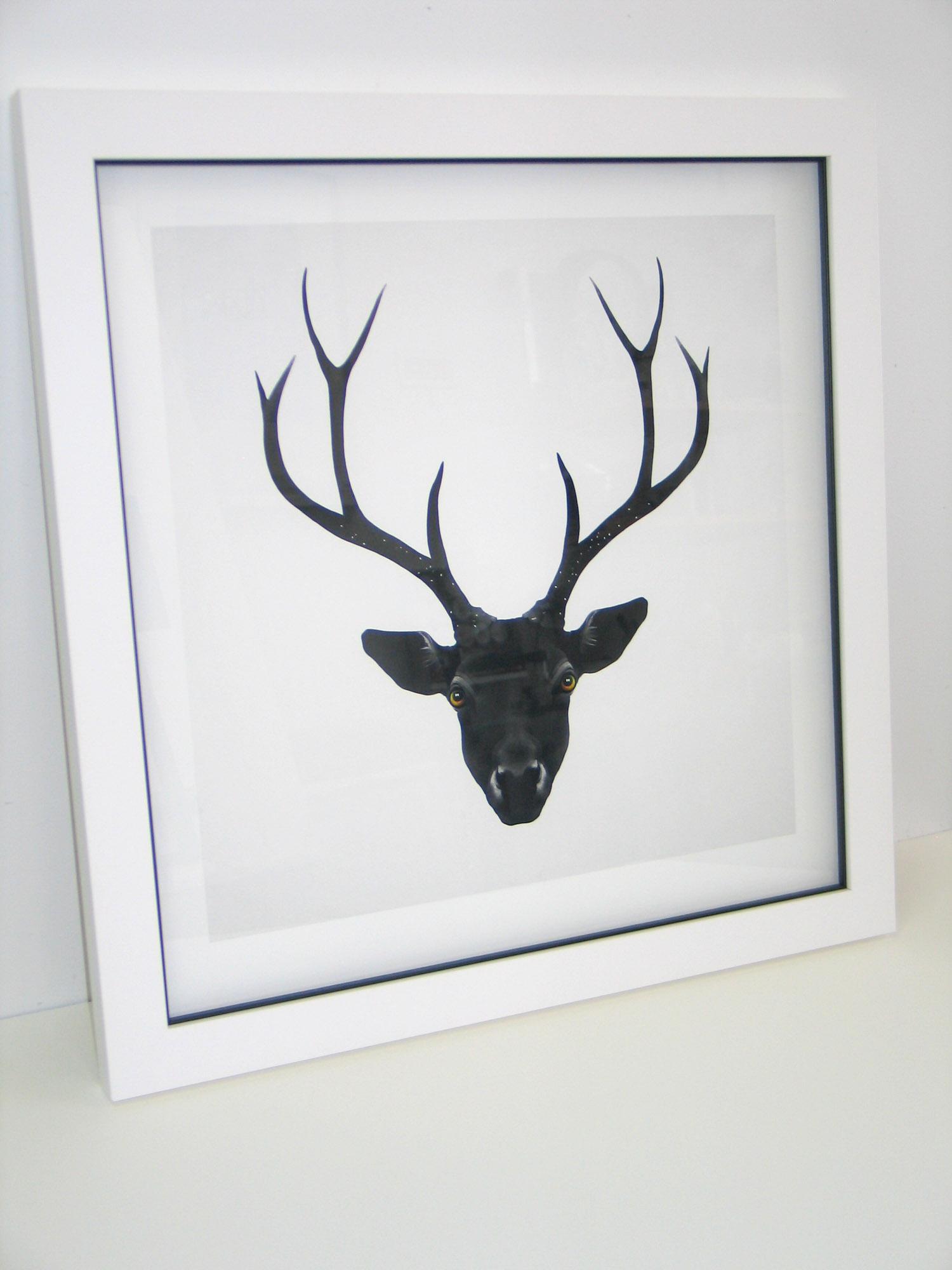 Rueben Ireland - The Black Deer