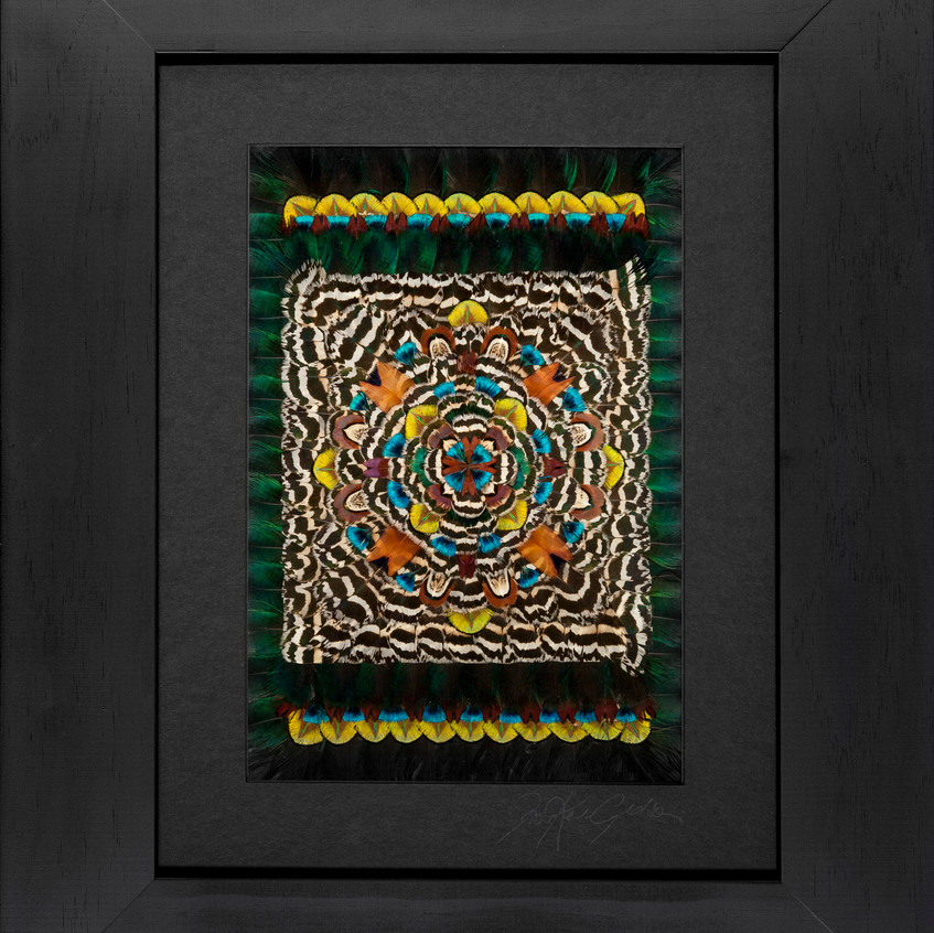 Fiona Kerr Gedson Magic Carpet