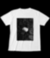 タイランドピコボール(タマヤスデ)Tシャツ|エキゾチックパートナーズ||