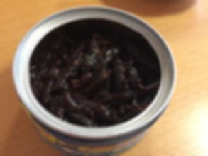 生き餌昆虫生産者が食べてみる イナゴの甘露煮缶詰 中身.JPG
