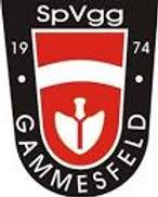 SpVgg Gammesfeld II – SV Wachbach II     1:5   (0:2)