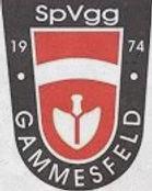 VfB Obertürkheim - SpVgg Gammesfeld   0:1 (0:1)