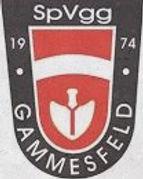 SpVgg Gammesfeld -SV Wachbach   1:2 (0:2)