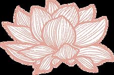 lotus@2x.png