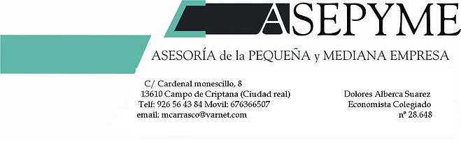 logo asepyme.JPG