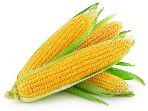 Maïs 100ml
