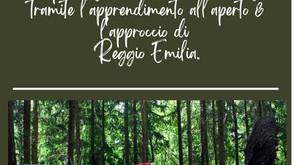 Un paradigma didattico d'eccellenza tramite l'apprendimento all'aperto e l'Approccio di Reggio